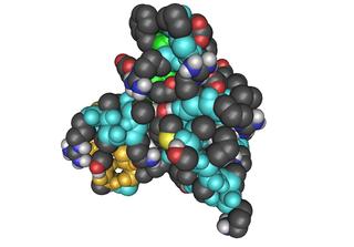 IGF-1, Insuline Like Growth Factor,