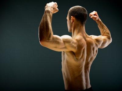 HIT Training Trainingsplan Muskelaufbau