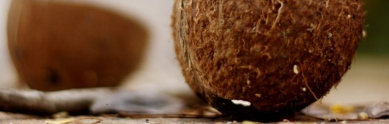 Die Wahrheit über Kokosöl: Wie gesund ist es? Hilft es beim Abnehmen?