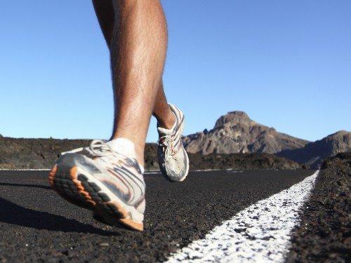 Muskelfasertyp 1 - Marathonläufer