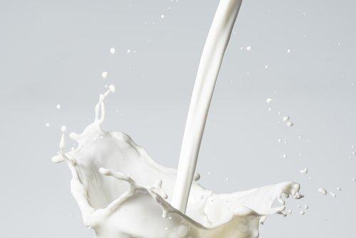 Milch ungesund oder gesund