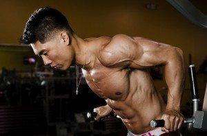 Muskelaufbau Dips