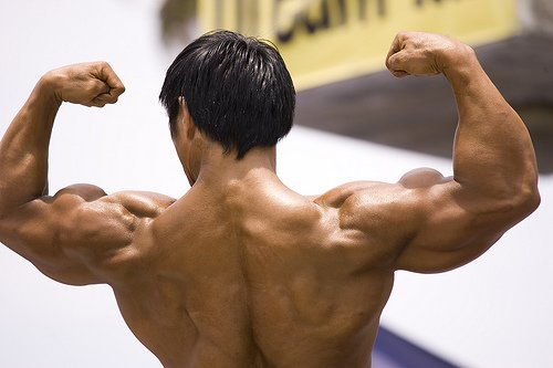GNBF Natural Bodybuilding