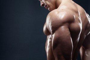 Schulterpresse