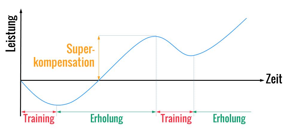 Das Geheimnis der Superkompensation: Machst Du diese 3 Trainingsfehler?