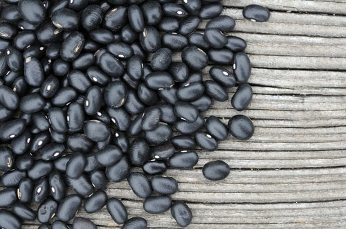 Schwarze Bohnen Hülsenfrüchte