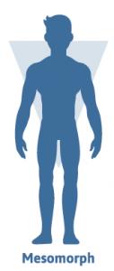 Mesomorph – Einer von 3 Körpertypen