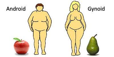 Bauchfett reduzieren