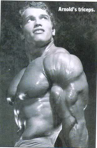 Arnold Triceps