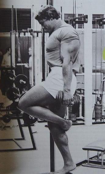 Arnold Schwarzenegger Trizeps
