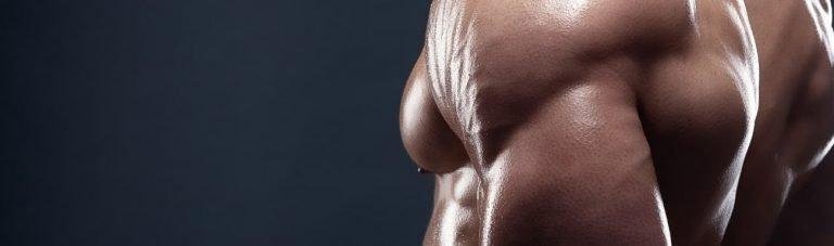 """Das ultimative Armtraining: Die besten Übungen für """"3-dimensionale"""" Arme"""