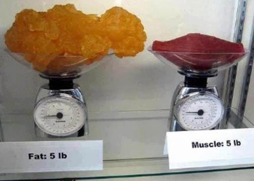 Wie viel kcal sind 1 kg