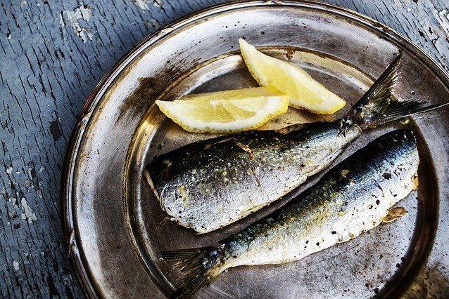 Vitamin D Lebensmittel Sardinen
